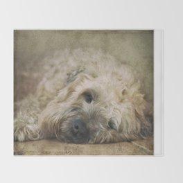 Wheaten Terrier - Let Sleeping Dogs Lie Throw Blanket