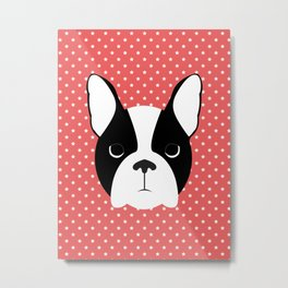 Dog - Boston Terrier Metal Print