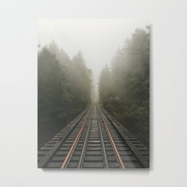 // beaten path // Metal Print