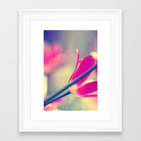 tulips Framed Art Prints featuring tulips by Falko Follert Art-FF77