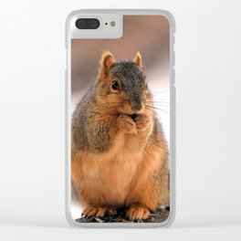 Foxilla Clear iPhone Case
