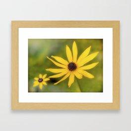 Golden Becki Framed Art Print
