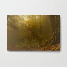 Forest mist Metal Print