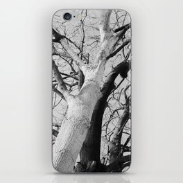 Thursday, 14th January 2016 iPhone Skin