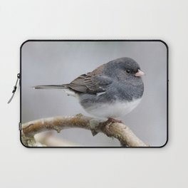 Fluffy Cassiar Dark-Eyed Junco on the Pear Tree Laptop Sleeve