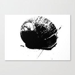 Caracol Canvas Print