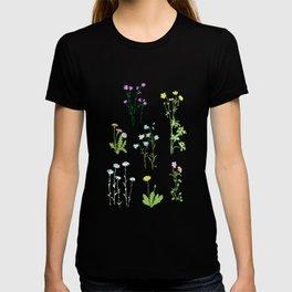 late summer T-shirt