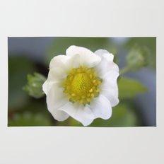 white strawberry flower. floral photo art. Rug