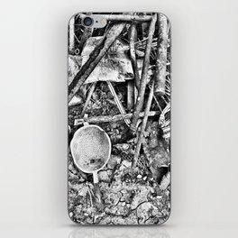 Italian Ruins iPhone Skin
