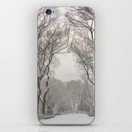 Central Park Mall Snow iPhone Skin