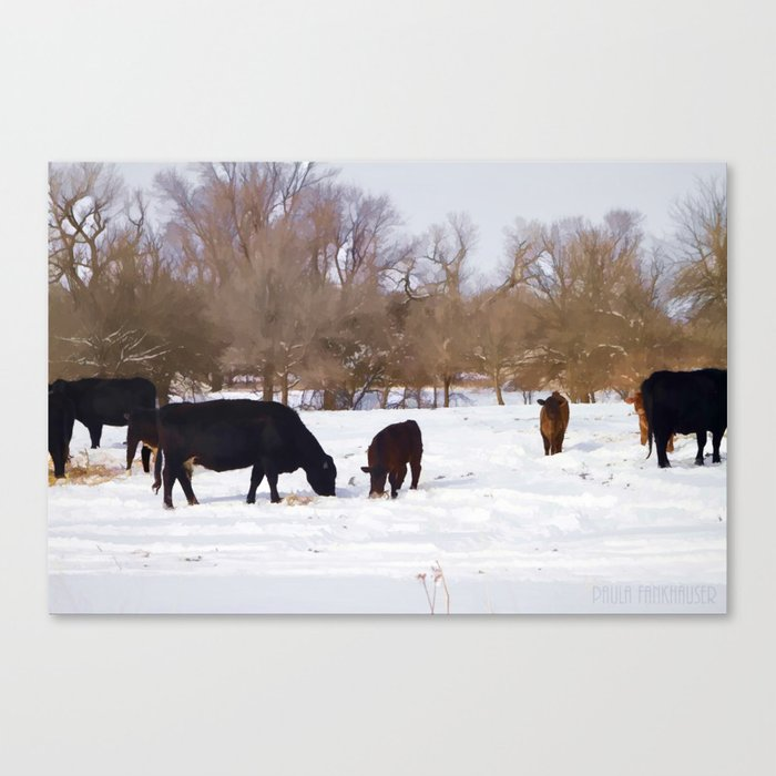 Cows in Snow Canvas Print