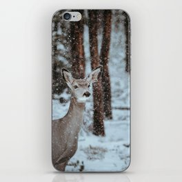 Finding Forest Friends iPhone Skin