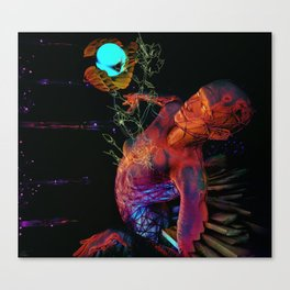 Reality Infusion Canvas Print