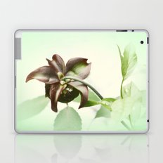 Dainty Laptop & iPad Skin
