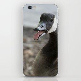 Squawking Canadian Goose iPhone Skin