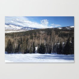 Forevergreen Canvas Print
