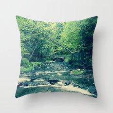 Follow Peaceful Waters Throw Pillow