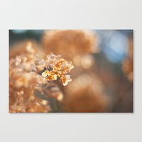 gold glitter Canvas Prints featuring Gold Glitter by Katie Kirkland
