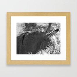 hello don Framed Art Print