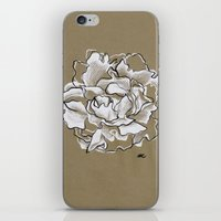 peony iPhone & iPod Skins featuring Peony by Mich Li