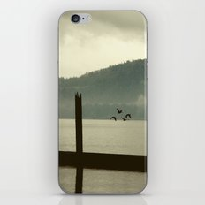 Abscond iPhone & iPod Skin