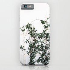 Trellis greenery Slim Case iPhone 6s
