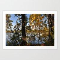 Autumn Trees by the Lake Art Print