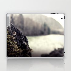 The Lookout Laptop & iPad Skin