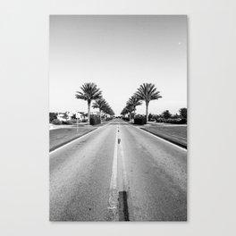 Alys Palms Canvas Print