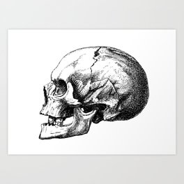 Just One More Skull Art Print