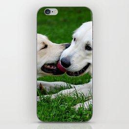 Giochi da cani iPhone Skin