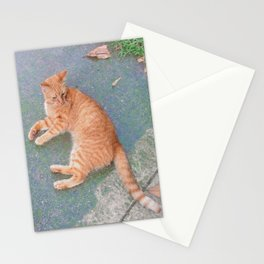 Cat Lounging Stationery Cards