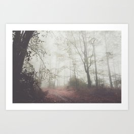 Autumn paths II - Landscape and Nature Photography Art Print