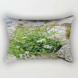 Little Goonreeve Farm - Spanish Daisy Rectangular Pillow