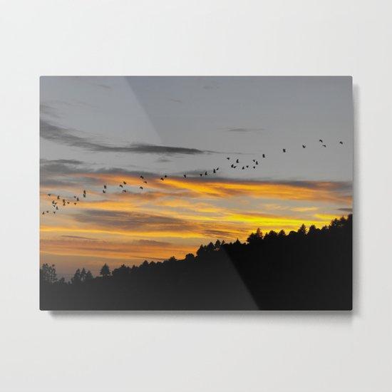 Flying South Metal Print