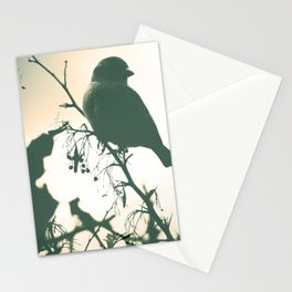 Alight Stationery Cards