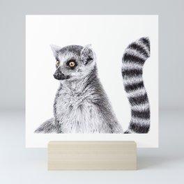 Ring Tailed Lemur Mini Art Print