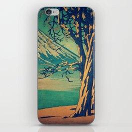 Late Hues at Hinsei iPhone Skin