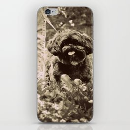 Man's Best Friend iPhone Skin
