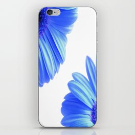 The blue daisies iPhone Skin