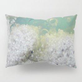VENT REEF Pillow Sham