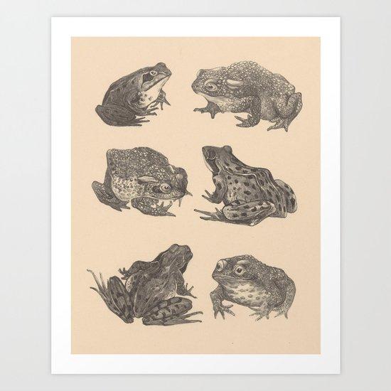 Naturalist Frogs by bluespecsstudio