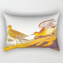 Buff-breasted Sandpiper Bird Rectangular Pillow