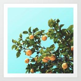 Summer Orange Tree Art Print