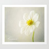 cosmos Art Prints featuring Cosmos by Fine Art by Rina