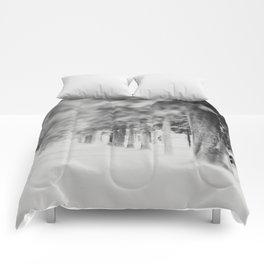 it's like walking into a dream ... Comforters