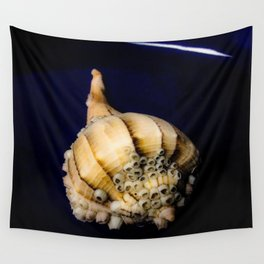 Sea Shell with Barnacles Wall Tapestry