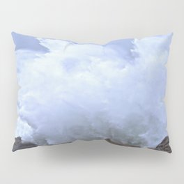 Splash! Pillow Sham