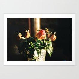 Roses Art Print