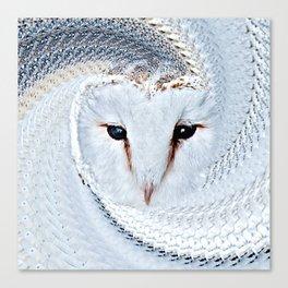 Barn Owl Portrait (Tyto Alba) Canvas Print